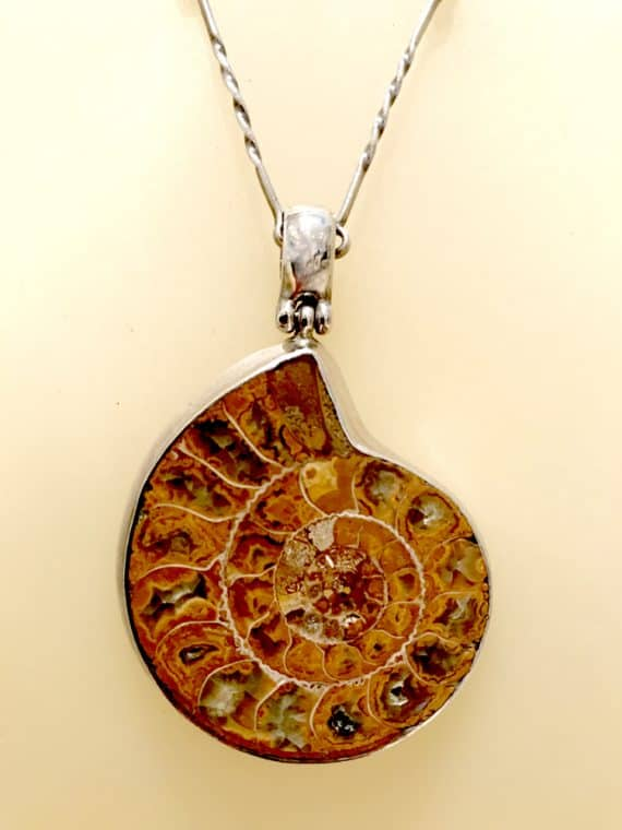 Ammonite Silver necklace